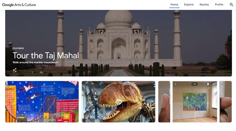 Google Arts & Culture Project
