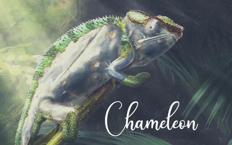 Chameleon Marylebone